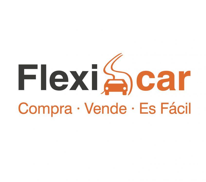 logotipo flexicar